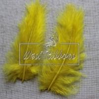 Перья пушистые,  желтые