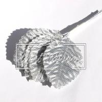 Листики  серебро