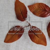 Листики  яблони коричневые