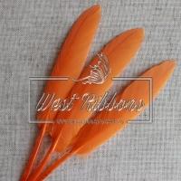 Перо длинное, оранжевое