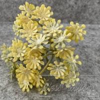 Хризантемы полевые с напылением