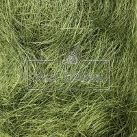 Сизаль оливковый 35-40 гр.
