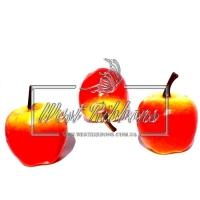 Яблочко большое  , желто - красное