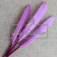 Перо длинное, фиолетовое